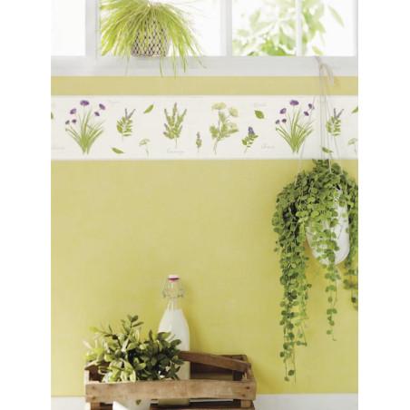 Frise Herbier fond blanc - Bon Appétit - Caselio