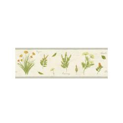 Frise Herbier beige - BON APPETIT - Caselio - BAP68432015