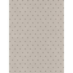 Papier peint Pois gris taupe - BON APPETIT - Caselio - BAP68389099