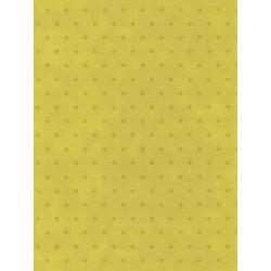 Papier peint Pois vert - BON APPETIT - Caselio - BAP68387002