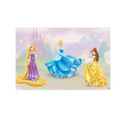 Toile Led Princesse