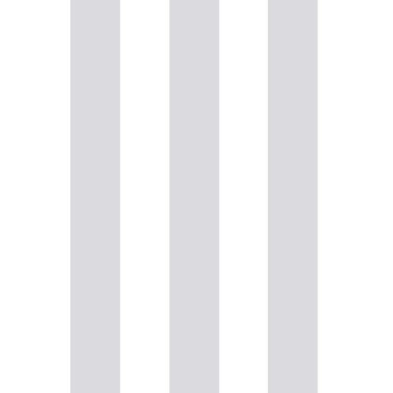 Papier peint à motif rayure SILVER STRIPE - vinyle sur intissé - Graham & Brown