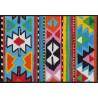 Tapis de propreté - Paillasson INKA coloré 50x75cm - EFIA