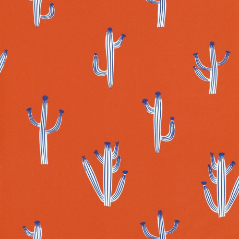 Papier peint cactus rouge - Smile - Caselio