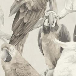 Papier peint Perroquet gris - Lucy in the sky - Rasch