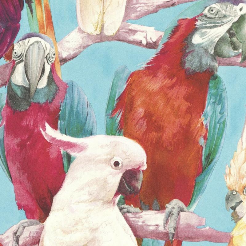 Papier peint Perroquet - Lucy in the sky - Rasch