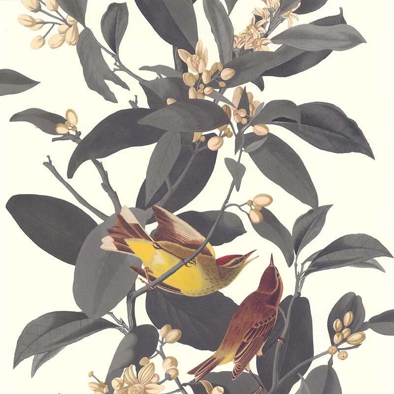 Papier Peint Branche Oiseau Gris Collection Rétro Vintage Lutèce
