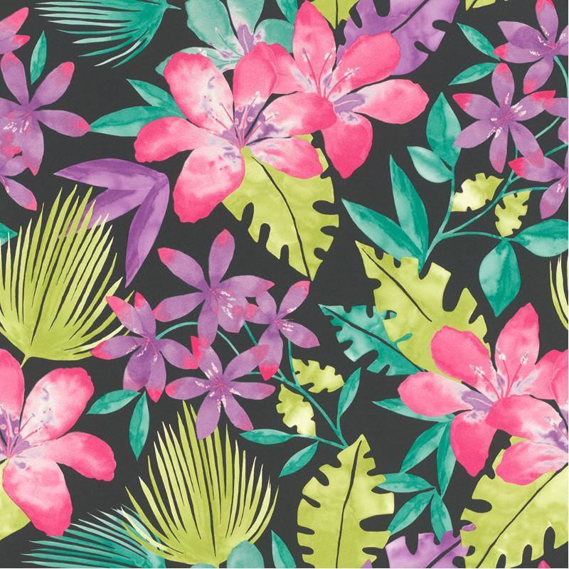 Papier Peint Floral Multicolore Tropical Bold Jungle Fond Noir Rasch