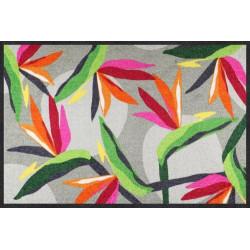 Tapis de propreté - paillasson BLOOM PARROT FLOWER- EFIA