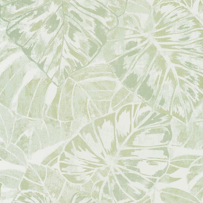 Papier peint Feuilles vert amande et blanc - PANAMA - Casadeco  PANA81077224