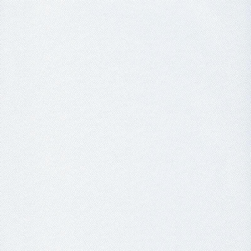 Papier peint Goma blanc et argent - HYGGE - Caselio - HYG100400101
