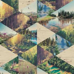 Papier peint Forêt multicolore - FAUX SEMBLANT - Ugepa - L135-04