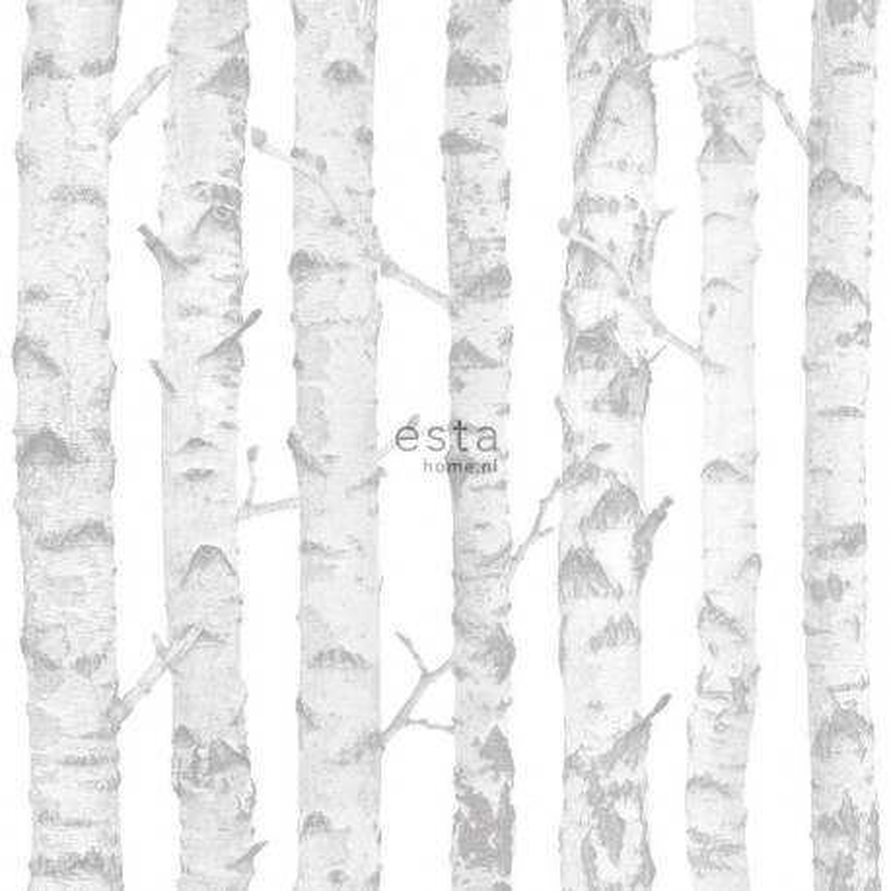 Papier peint Troncs de bouleau blanc et argent - LITTLE BANDITS - Esta Home - 138944