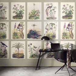 Panoramique Herbarium - ENCYCLOPEDIA - Casadeco - ENCY83341466