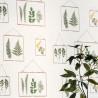 Papier peint Millefeuille vert à motif petits cadres feuillage nature - Au bistrot d'Alice - Caselio