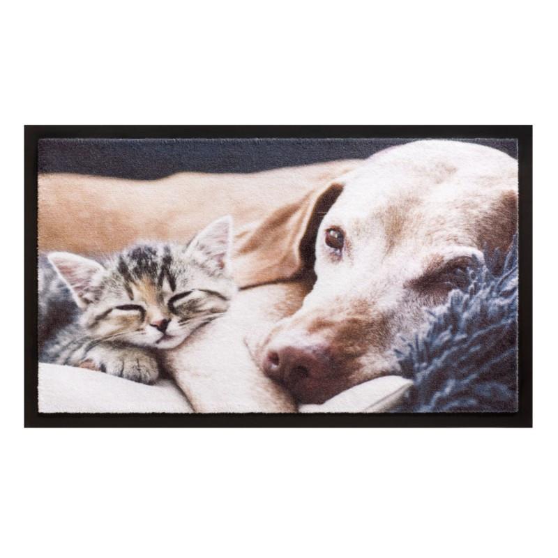 Paillasson / Tapis de propreté - IMAGE - Kitten - Hamat