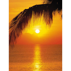 Panoramique PALMY BEACH SUNRISE collection Tropical - Komar