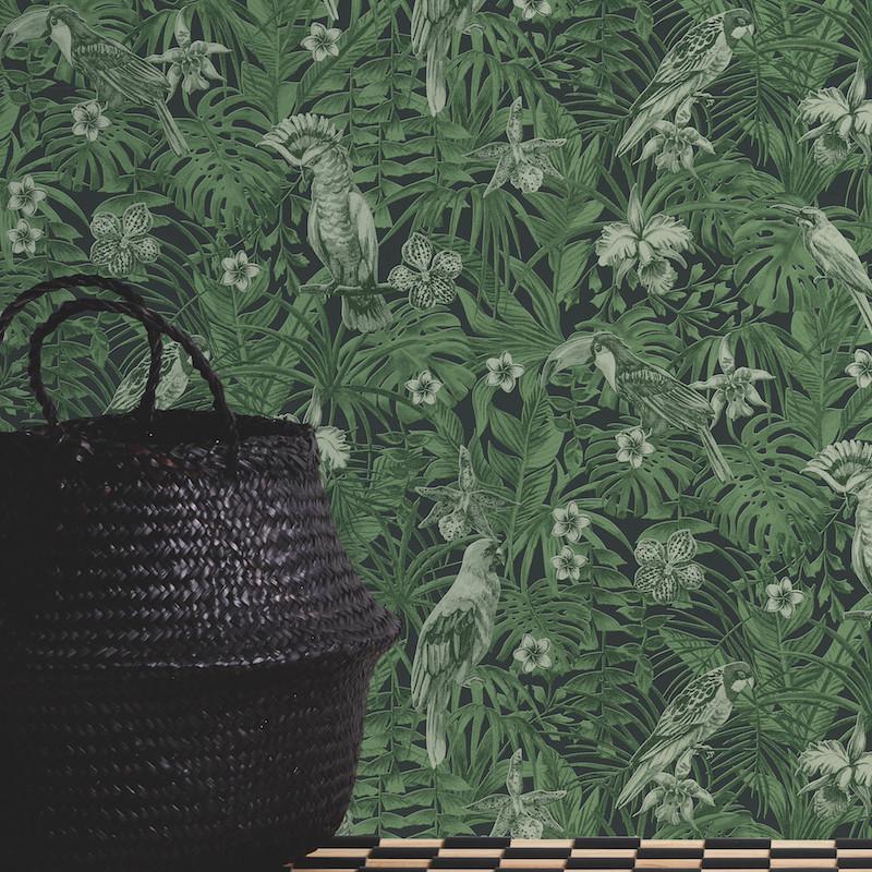 Papier peint Jungle Perroquets vert et noir - GREENERY - AS Creation - 372101