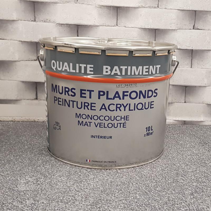"""Peinture intérieure spéciale mur """"QUALITE BATIMENT"""" blanc mat velouté - THEODORE - 10L"""