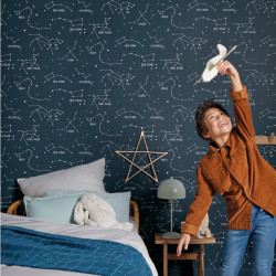 Papier peint Constellations bleu nuit - OUR PLANET - Caselio - OUP101916918