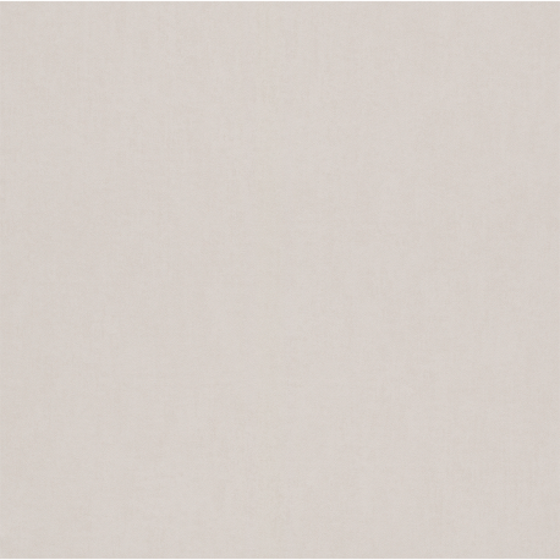 Papier peint Uni gris pâle - BAMBINO - Rasch - BBN247411