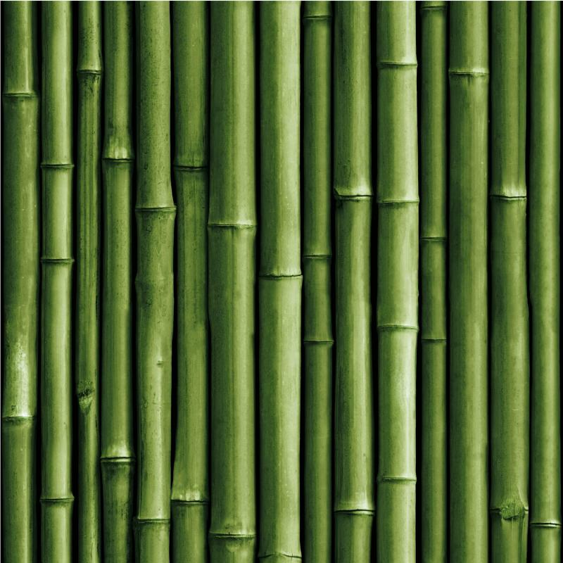 Papier peint adhésif Bamboo vert - LES ADHESIFS - Lutèce - RMK11449
