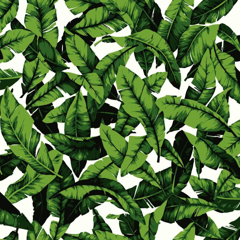 Papier peint adhésif Palm Leaf vert - LES ADHESIFS - Lutèce - RMK11045