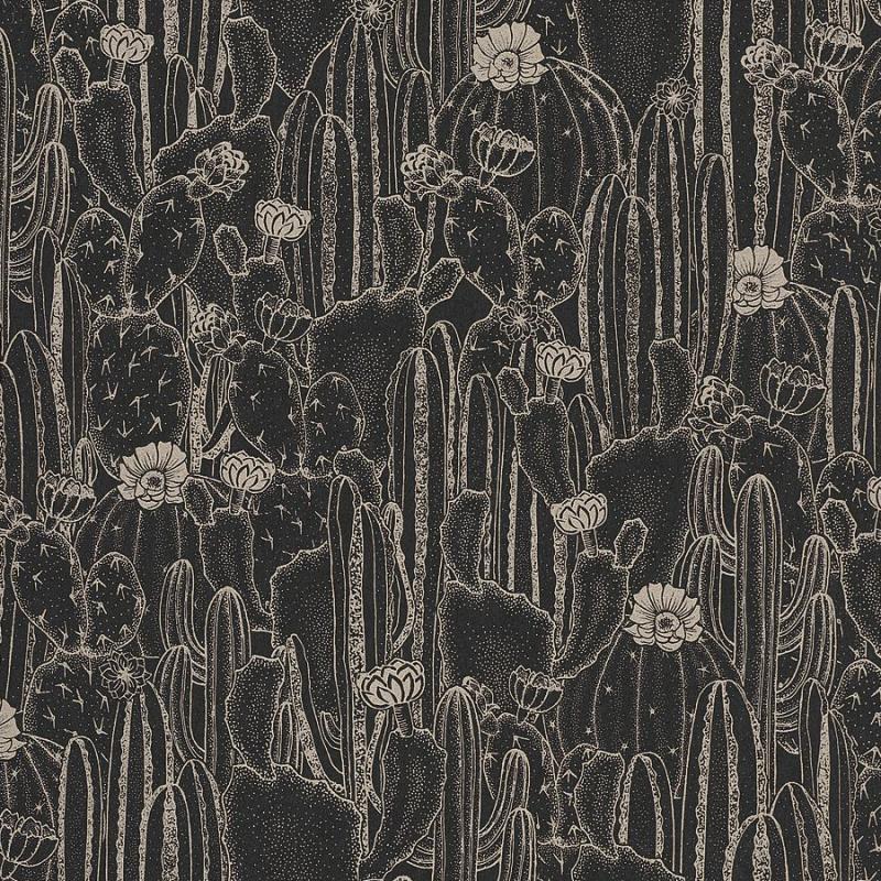 Papier peint Cactaceae noir - BOTANICA - Casadeco - BOTA85929512