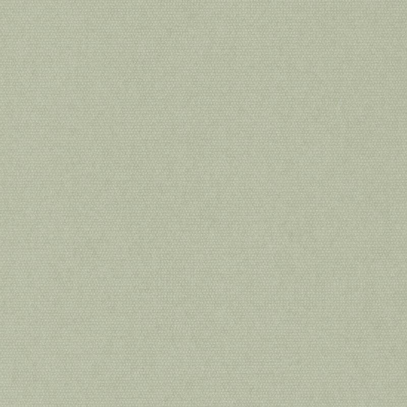 Papier peint Botanica uni amande - BOTANICA - Casadeco - BOTA82077159