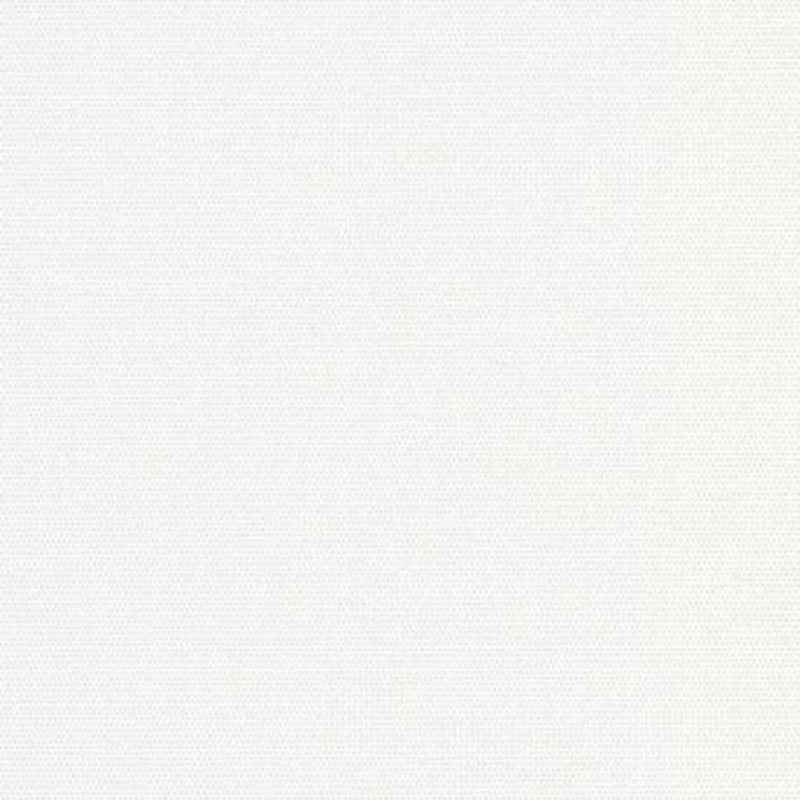 Papier peint Canevas  uni blanc - BOTANICA - Casadeco - BOTA82070127