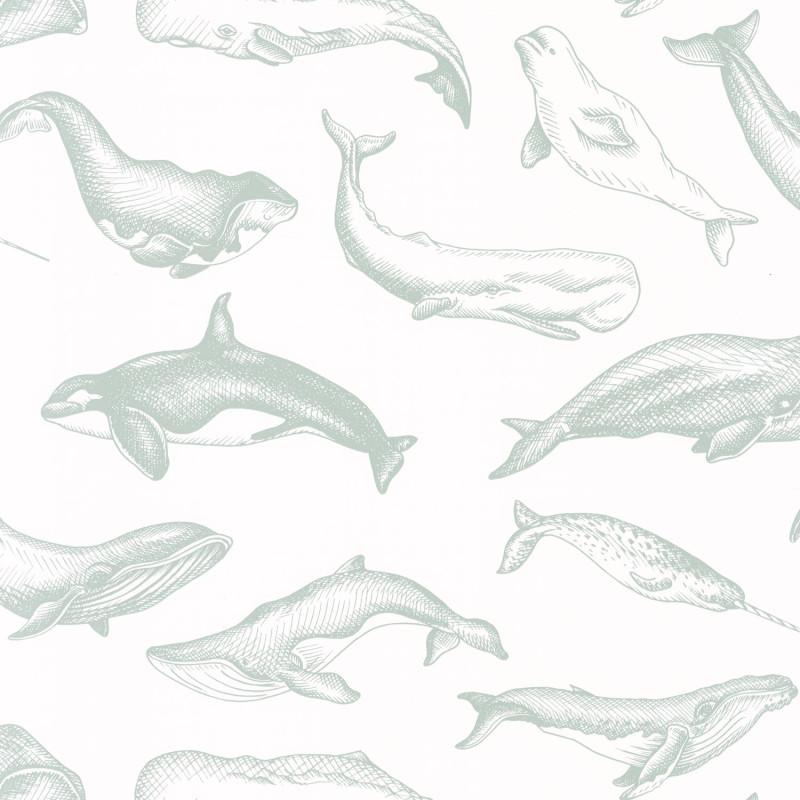 Papier peint Whale Done vert d'eau - SEA YOU SOON - Caselio - SYO102797010