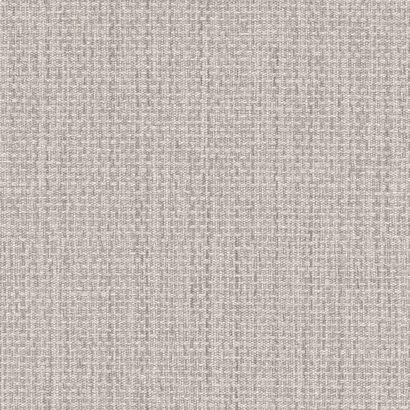 Papier peint Uni gris clair - KIMONO - Rasch - 407969