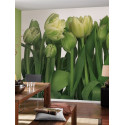 Panoramique TULIPS collection Floral - Komar