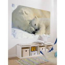 Panoramique POLAR BEAR collection Landscapes - Komar
