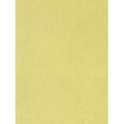 Papier peint Uni vert - LOVE - Caselio