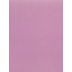 Papier peint Uni Rose 1 - LOVE - Caselio
