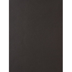 Papier peint Lola noir - LOVE - Caselio - LOV57919120