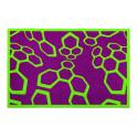 Tapis de propreté - paillasson violet et vert DYNACOMBS - Lars Contzen