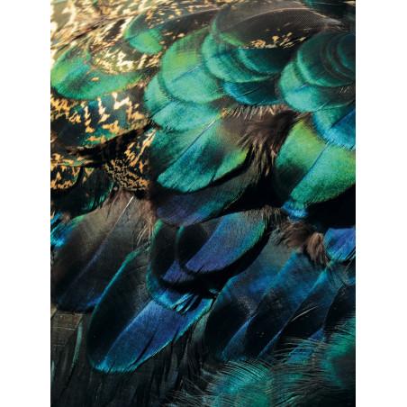 Panoramique intissé Exotique - Collection 10 - Caselio
