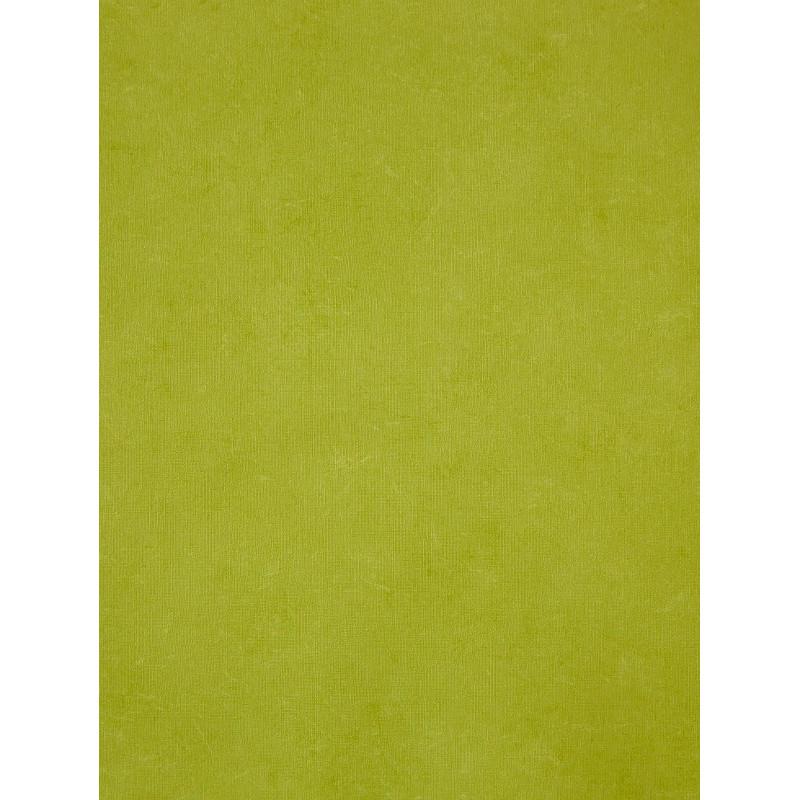 Papier peint uni vert pomme - Cavaillon - Caselio