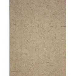 Papier peint à motif Cartes Taupe - Marina - Casadeco