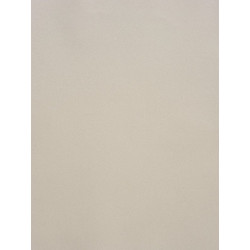 Papier peint Uni gris beige - LOVE - Caselio