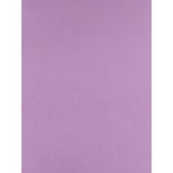 Papier peint Uni mauve - Arc-en-ciel - Casadeco