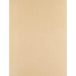 Papier peint uni taupe clair arc en ciel casadeco for Papier peint couleur taupe clair