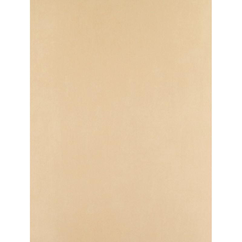 Papier peint Uni taupe clair - Arc-en-ciel - Casadeco