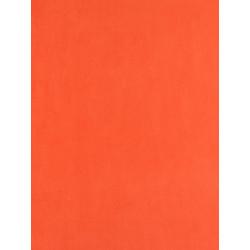 Papier peint Uni rouge orangé - Arc-en-ciel - Casadeco