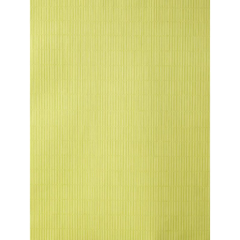 "Papier peint AMAZONIA effet "" store "" vert par Caselio"