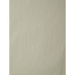 Papier peint AMAZONIA unis taupe par Caselio