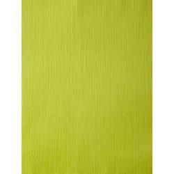 Papier peint AMAZONIA unis vert pomme par Caselio