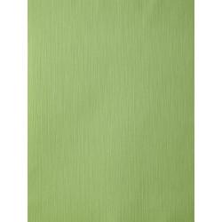 Papier peint AMAZONIA unis vert par Caselio